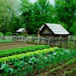 Off Grid Garden & Farm