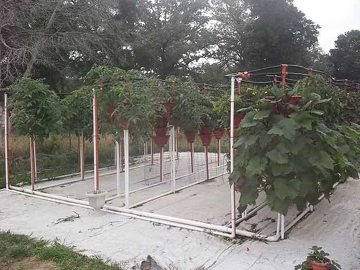 Ezgro Garden Vertical Container Off Grid Living