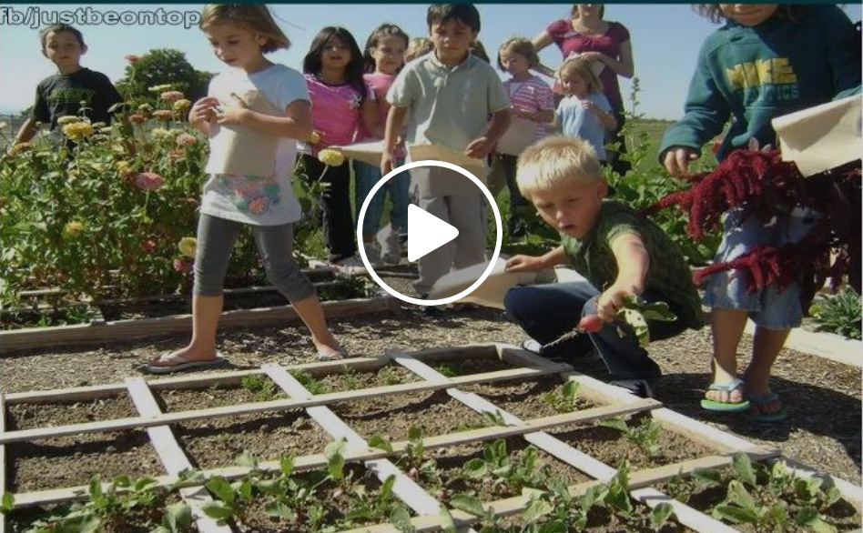 teaching kids how to grow their own food