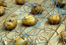 potato battery potato power