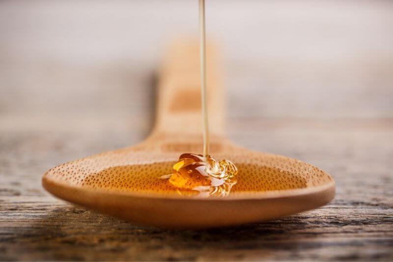 Honey-offgridlving.net