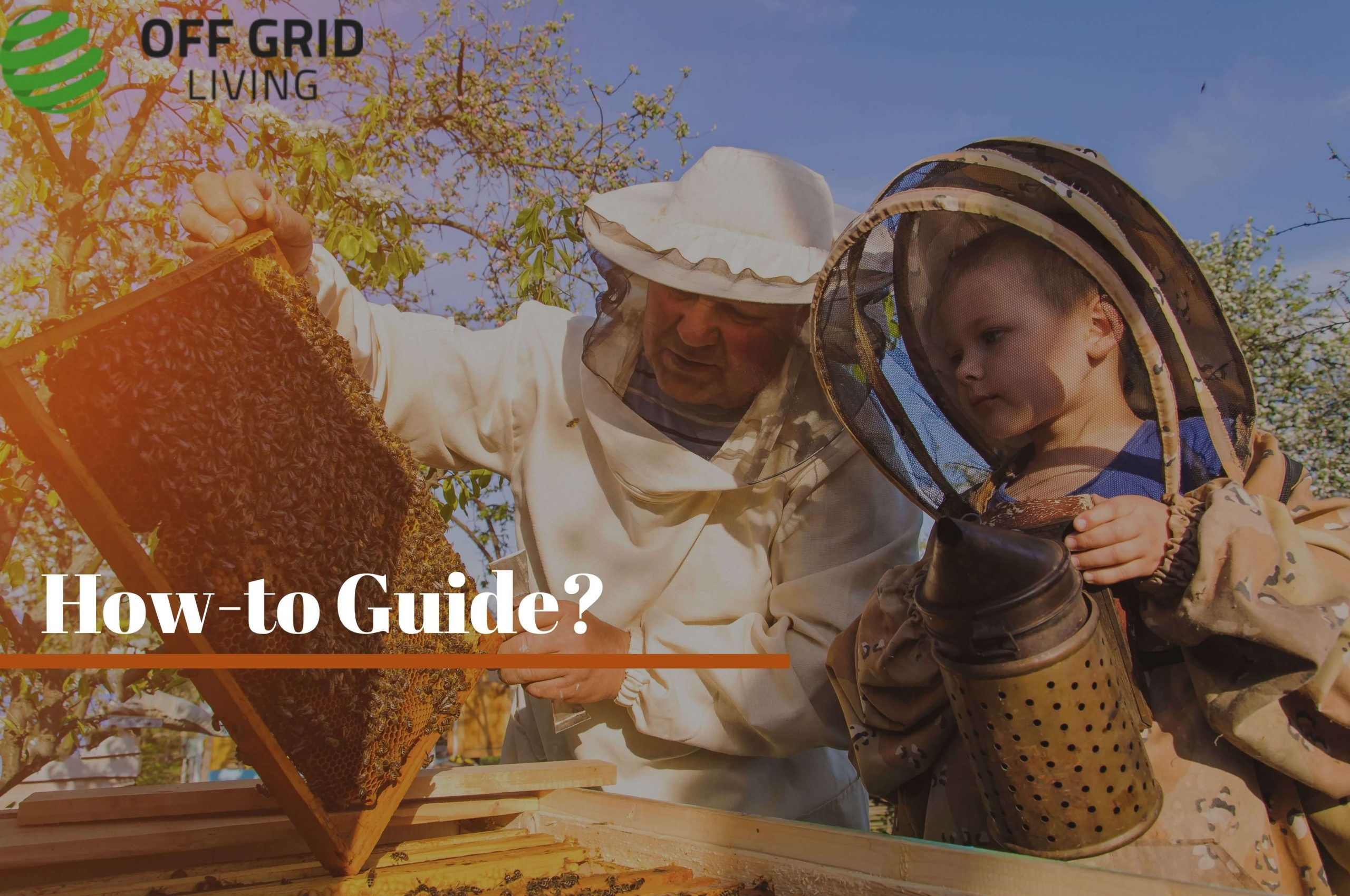 Benefits and How-To Guide of Beekeeping | offgridliving.net